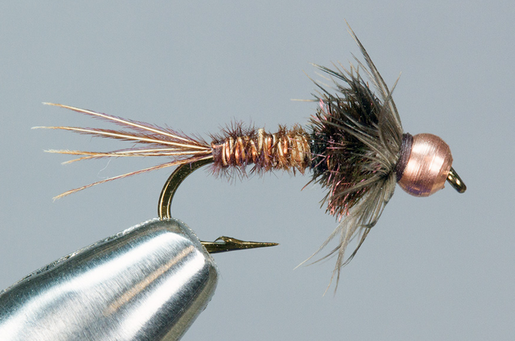 bead-head-pheasant-tail-nymph