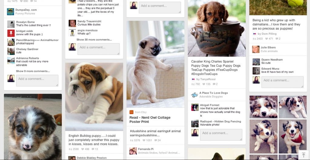pinterest-puppies