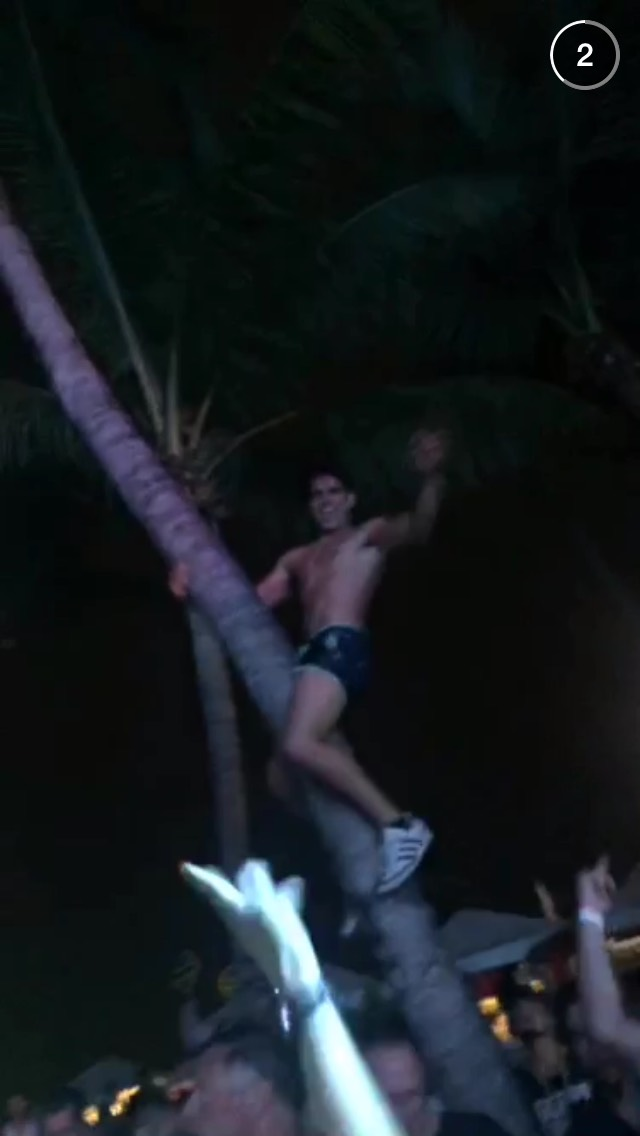 guy-on-tree-ultra-snapchat