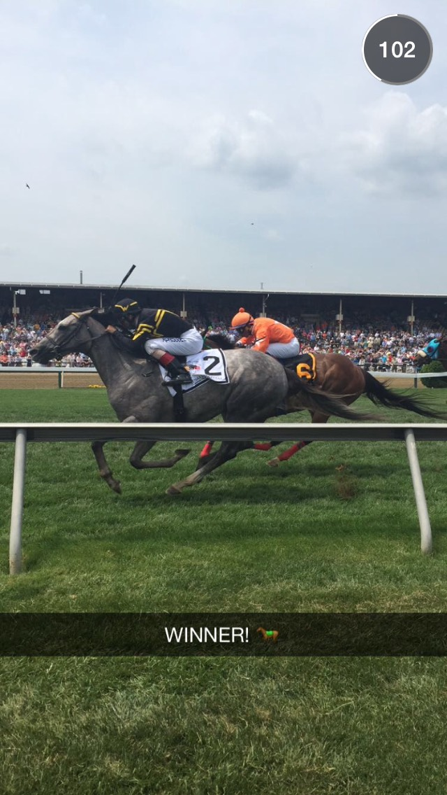 preakness-grey-horse-snapchat