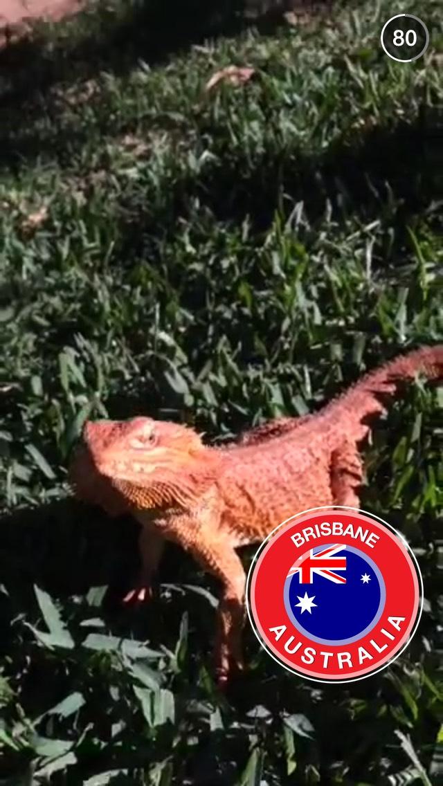 red-iguana-brisbane-snapchat-story