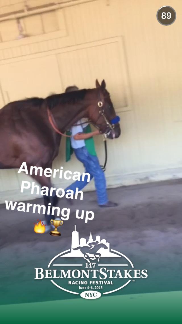 american-pharoah-snapchat story