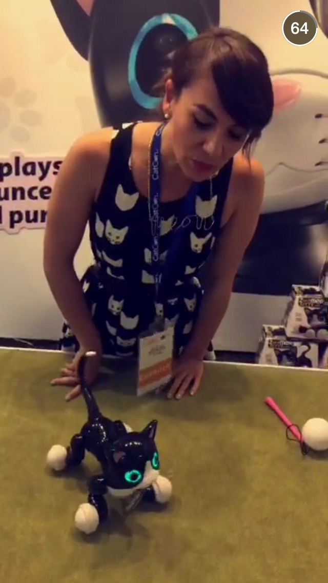 robotic-cat-catcon-snapchat-story