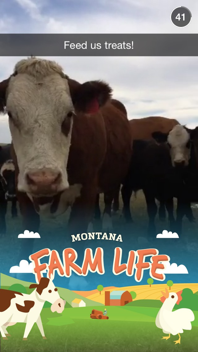 montana-farm-life-snapchat-story