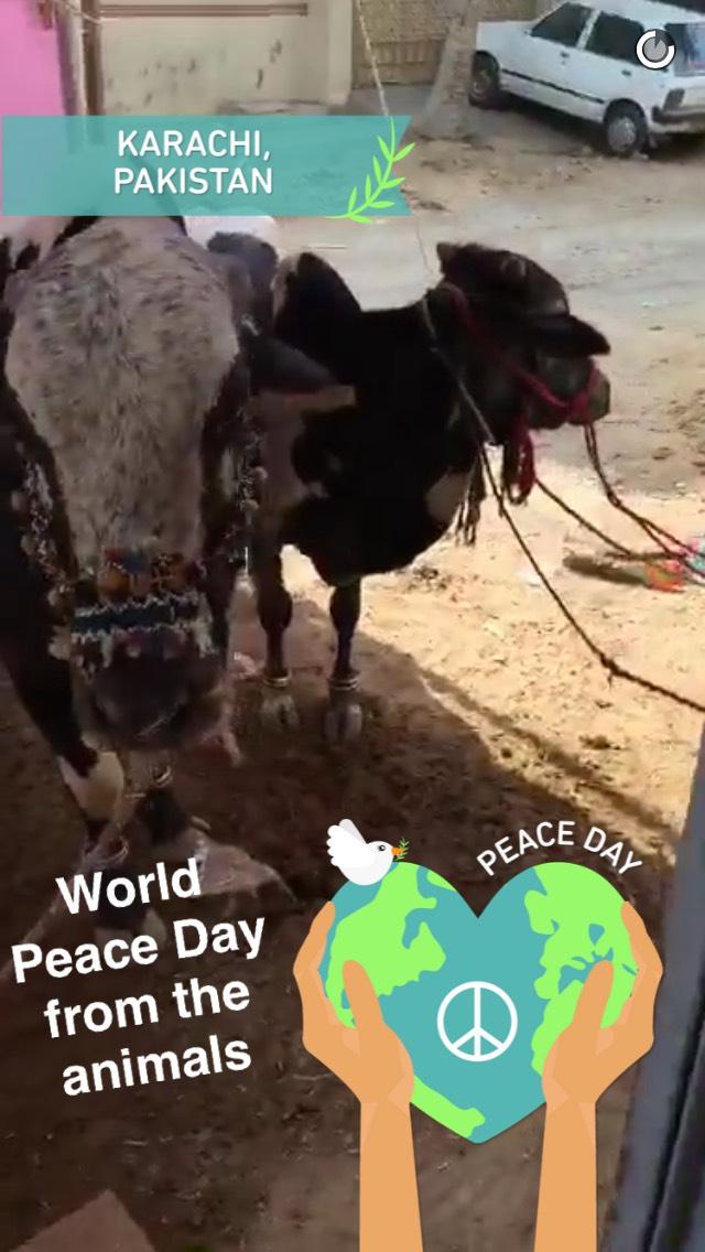 world-peace-snapchat