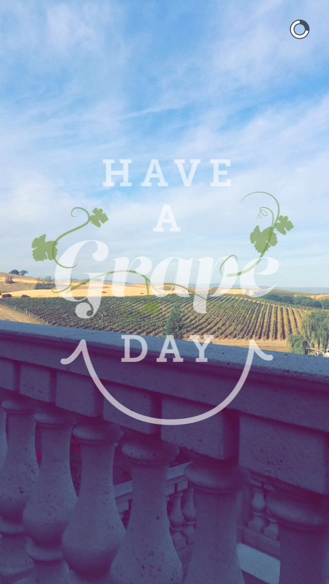 grape-day-snapchat-story