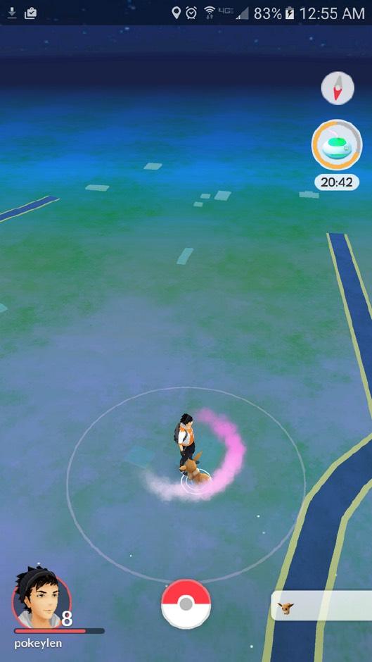 pokemon-go-timer