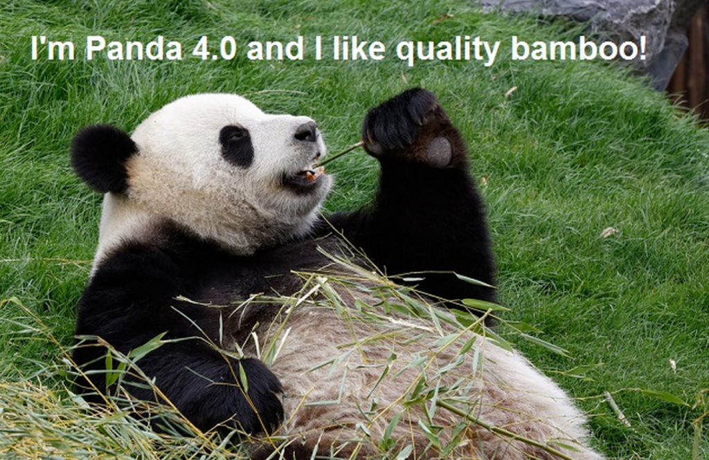 how-to-recover-panda-4