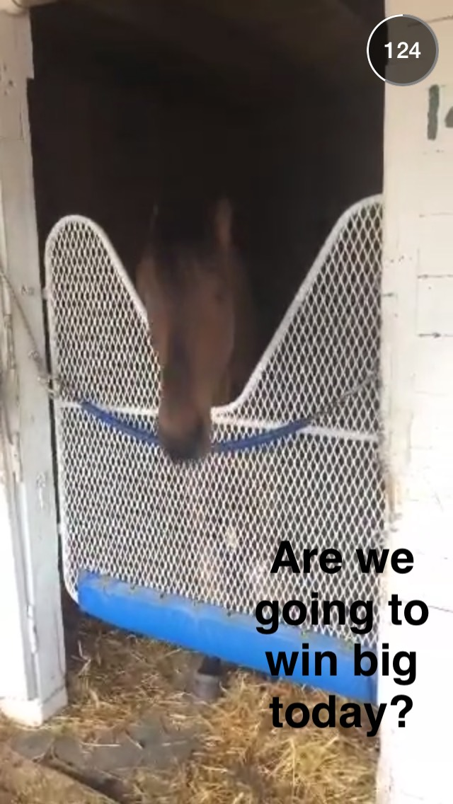 kentucky-derby-horse-snapchat